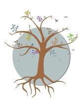 arbre 3 coloré.OKweb